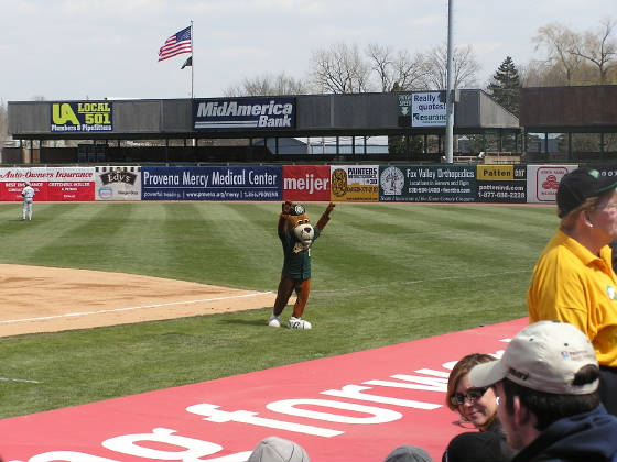 Ozzie working the crowd - Kane County Cougars