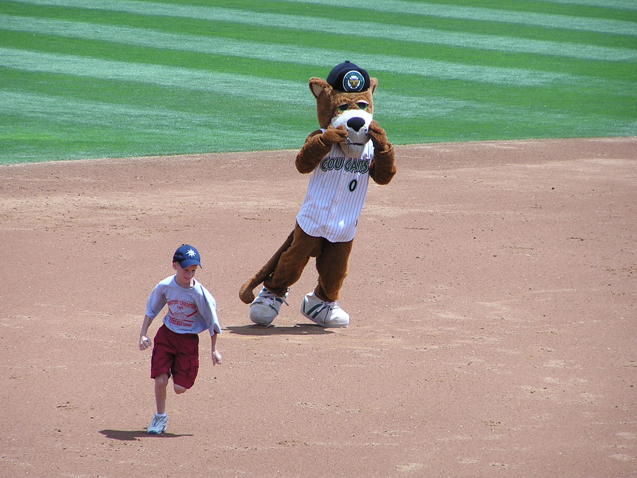 Ozzie losing another race, Kane County Cougars